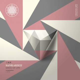 SANKAKKEI Icosahedron seed packaging